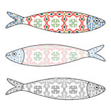 Traditional Portuguese icon. Colored sardines. With typical Portuguese tiles patterns. Vector illustration Stock Photos