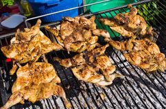 Traditional portuguese piri piri chicken on the BBQ Royalty Free Stock Image