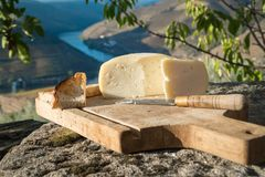 Traditional Portuguese soft cow cheese Stock Image