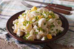 Traditional potato salad close-up on a plate. horizontal Royalty Free Stock Images