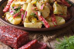 Traditional potato salad and ingredients, horizontal Royalty Free Stock Photos