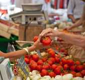 Traditional provencal market Royalty Free Stock Photo