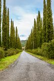 A traditional public countryside road lined with cypresses. In Tuscany - 2 Royalty Free Stock Photos