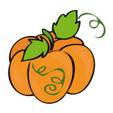 Traditional Pumpkin. Stock Images