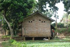 Traditional Red Brick House on the Spinach Farm in Javenese Village_1