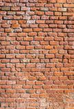 Traditional red brick wall royalty free stock image