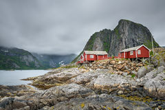 Traditional red rorbu cottages  in Hamnoy village, Lofoten islands, Norway Royalty Free Stock Image