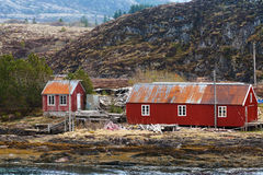 Traditional red wooden fishing barns, Norway Royalty Free Stock Photography