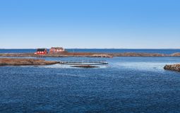 Traditional red wooden houses, Norway Royalty Free Stock Photography