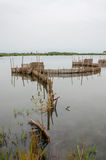 Traditional reed fishing traps used in wetlands near the coast in Benin. These walls lead the fish into narrow traps where they can be collected Stock Photo