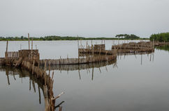 Traditional reed fishing traps used in wetlands near the coast in Benin. These walls lead the fish into narrow traps where they can be collected Stock Photos