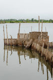 Traditional reed fishing traps used in wetlands near the coast in Benin. Stock Photo