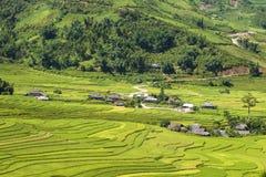 Traditional rice terrace fields in Mu Cang Chai to SAPA region Vietnam. Traditional rice terrace fields in SAPA region, northern Vietnam stock image