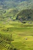 Traditional rice terrace fields in Mu Cang Chai to SAPA region Vietnam. Traditional rice terrace fields in SAPA region, northern Vietnam stock images