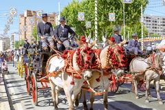 Traditional riding horse carriages celebrating Seville`s April Fair. royalty free stock photography