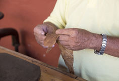 Traditional Rolling Cigars in Cuba. Hands of an experienced Cuban cigar-roller in action. Senior handling tobbaco leaves to make a worldwide famous Cuban cigar stock photography