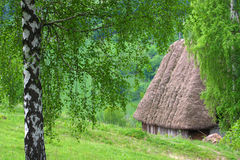 Traditional romanian cottage Stock Images
