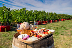 Traditional Romanian food plate with wine and vineyards in the b. Ackground. Cheese, bread, sausages, onions and red wine in glass stock photos