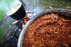 Traditional Romanian food, sarmale. Cabbage with minced meat cooking stock photos