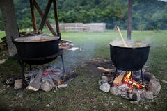 Traditional Romanian food, sarmale Royalty Free Stock Images