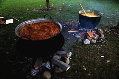 Traditional Romanian food, sarmale Royalty Free Stock Image