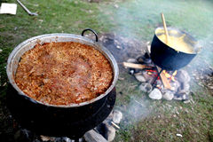 Traditional Romanian food, sarmale. Cabbage with minced meat cooking royalty free stock photography