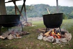 Traditional Romanian food, sarmale Royalty Free Stock Photo