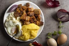 Traditional Romanian food `Tochitura Moldoveneasca`. Made with pork meat, egg and cheese with polenta on plate royalty free stock image