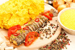 Traditional romanian meal Stock Image