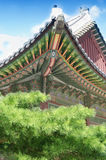 Traditional roof at Changdeok Palace Royalty Free Stock Photo