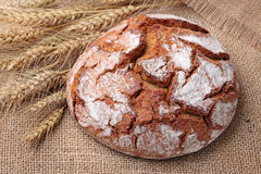 Traditional round rye bread Stock Images