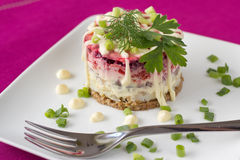 Traditional Russian Beetroot and herring salad. Beetroot salad with carrot, onion, potato, herring,  garnish with mayonnaise, spring onion and dill Stock Photography