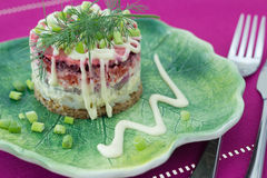 Traditional Russian Beetroot and herring salad Royalty Free Stock Images