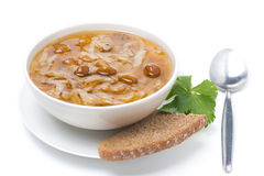 Traditional Russian cabbage soup with mushrooms, isolated. Traditional Russian cabbage soup (shchi) with wild mushrooms, isolated on white Royalty Free Stock Image