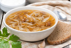 Traditional Russian cabbage soup (shchi) with mushrooms in bowl Royalty Free Stock Images