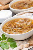 Traditional Russian cabbage soup (shchi) with mushrooms Royalty Free Stock Photography