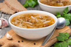 Traditional Russian cabbage soup (shchi) with wild mushrooms Royalty Free Stock Photos