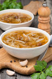 Traditional Russian cabbage soup with wild mushrooms Royalty Free Stock Photography