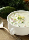 Traditional Russian cold soup with vegetables Royalty Free Stock Photography