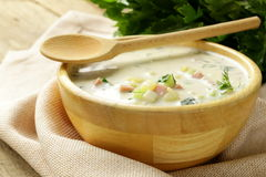 Traditional Russian cold soup with vegetables Stock Photos