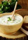 Traditional Russian cold soup with vegetables Royalty Free Stock Images