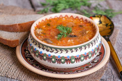 Traditional Russian cuisine - vegetable soup with cabbage. On the desk Royalty Free Stock Photos