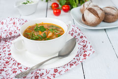 Traditional Russian cuisine: vegetable soup from c Stock Photography
