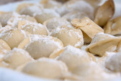 Traditional Russian dish. Small group of pelmeni in a flour Stock Photos