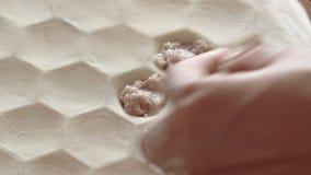 Traditional russian dumpling stock video