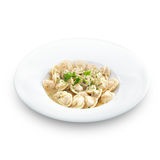 Traditional Russian dumplings with meet or cheese Stock Photography