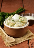 Traditional Russian dumplings served with dill Stock Photos