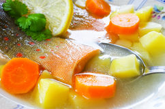 Traditional russian fish soup Stock Images