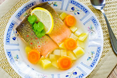 Traditional russian fish soup Royalty Free Stock Photography