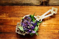 Traditional russian green herbal tea from Fireweed leaves: Koporye Tea, Russian Tea or Ivan Chai. Stock Image